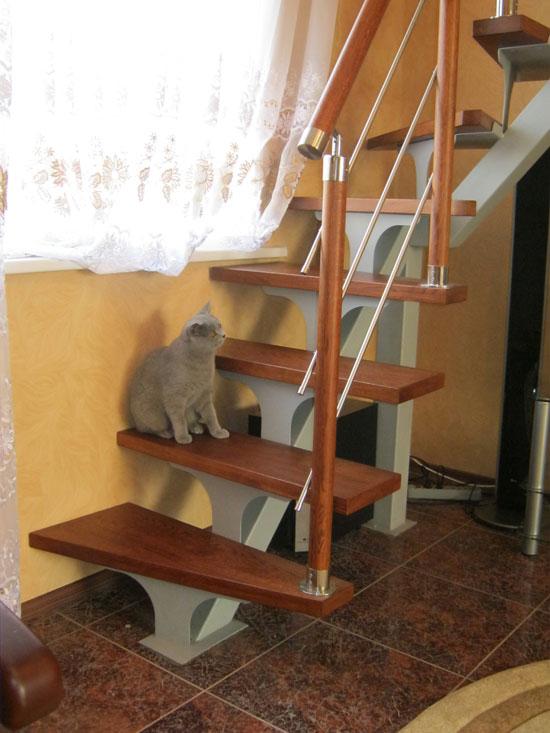 Оби лестницы, бесплатные фото, обои ...: pictures11.ru/obi-lestnicy.html